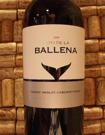 ALTO DE LA BALLENA TANNAT MERLOT CAB